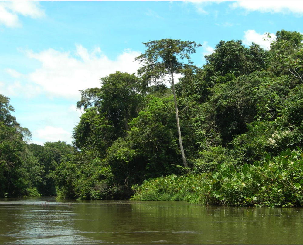 biodiversity-research