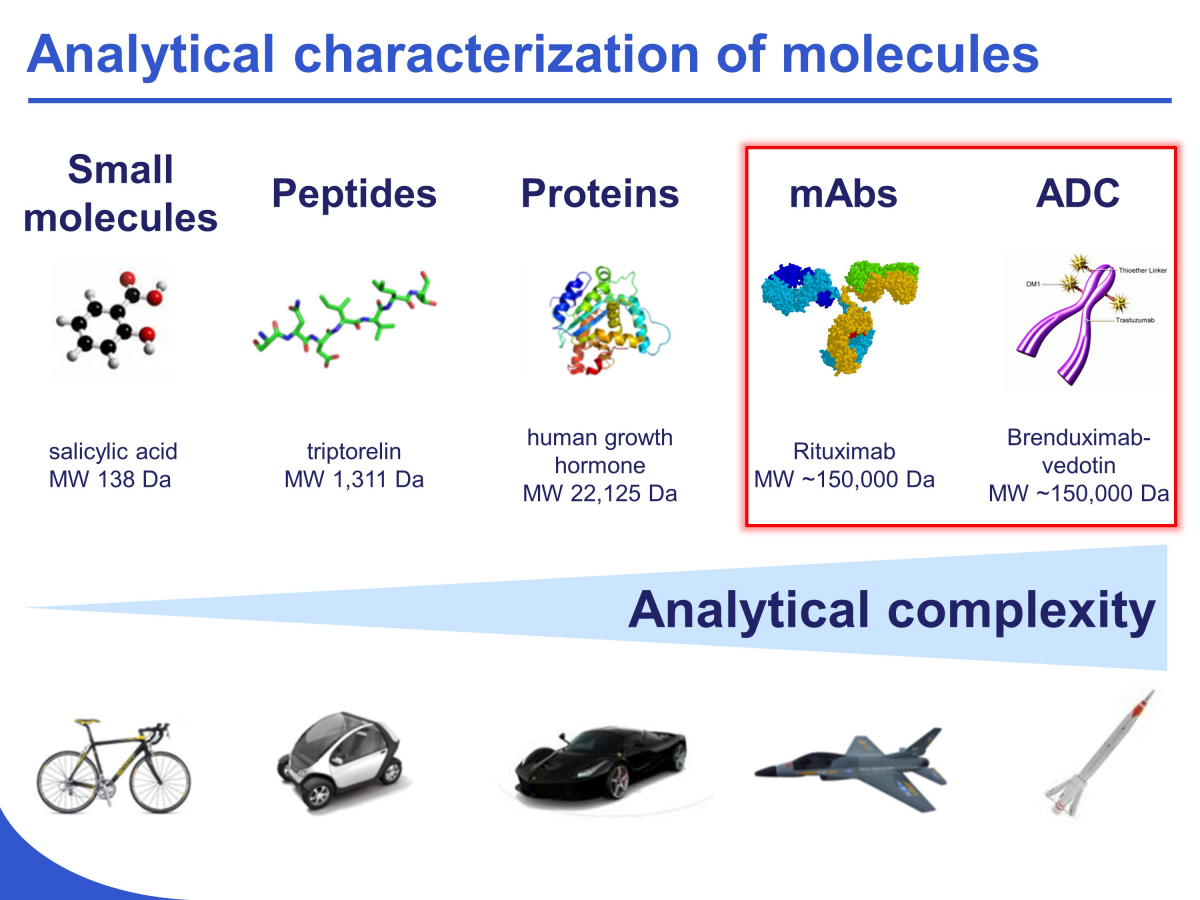 development-of-innovative-strategies-for-the-analytical-characterization-of-protein-biopharmaceuticals